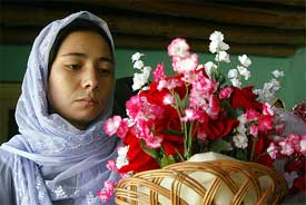 Afghan war widow